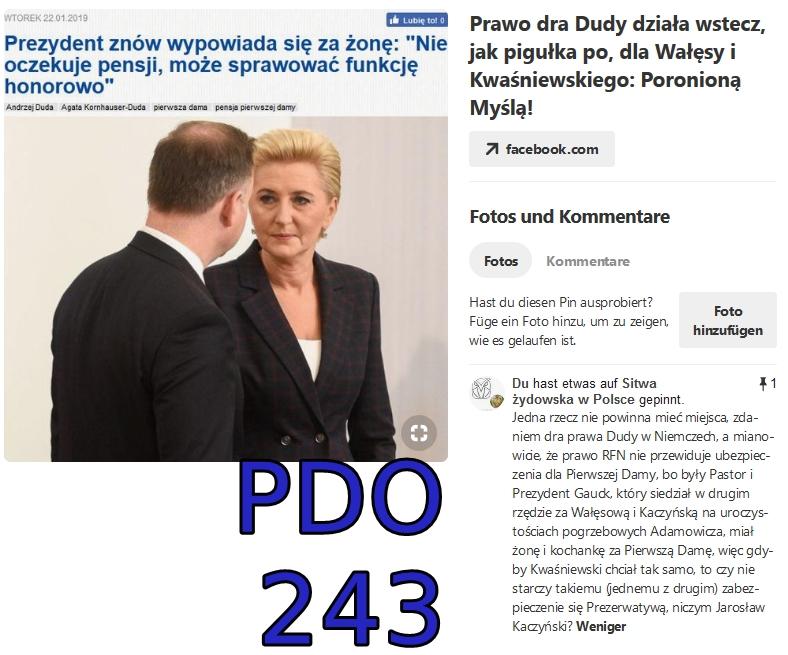 pdo243 screenshot_2019-01-22 pinterest